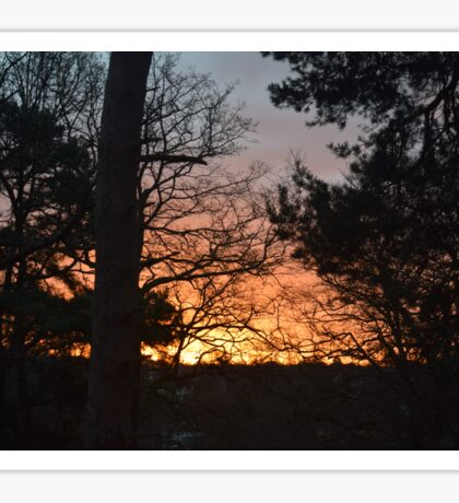 Winter Sunrise in Southampton Sticker