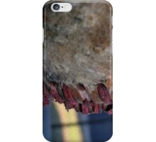 American Seams iPhone Case/Skin