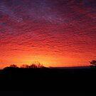 January Sunrise. by poohsmate