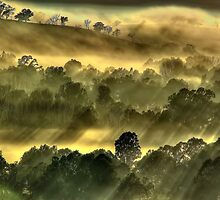 Misty morning, Everton hills by Kevin McGennan