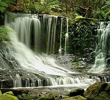 Horseshoe Falls, Mount Field  by Kevin McGennan