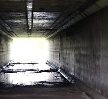 The Light at the End of the Tunnel by Adam Wain