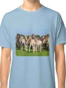 A Wild Herd of Dulmen Horses with Foals Classic T-Shirt