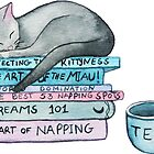 The Art of the Miau by DiBeauteous