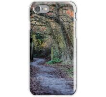Simply A Path iPhone Case/Skin