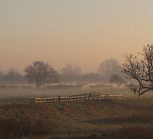 Misty Morning by Adam Wain