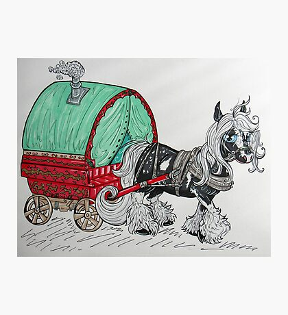 Gypsy Vanner Horse and Cart Photographic Print