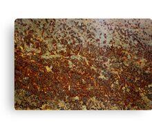 Rust 2 Canvas Print