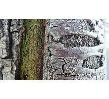 Texture 01 Photographic Print