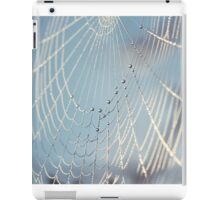 Web 2 iPad Case/Skin