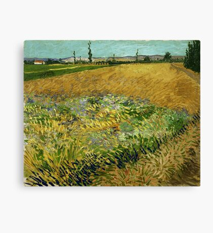 Vincent Van Gogh - Wheat Field With The Apilles Foothills In The Background 1888 Canvas Print