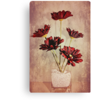 Brighten up the room Canvas Print