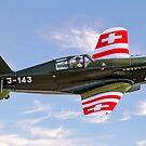 EFW/Dornier D-3801 J-143 HB-RCF by Colin Smedley