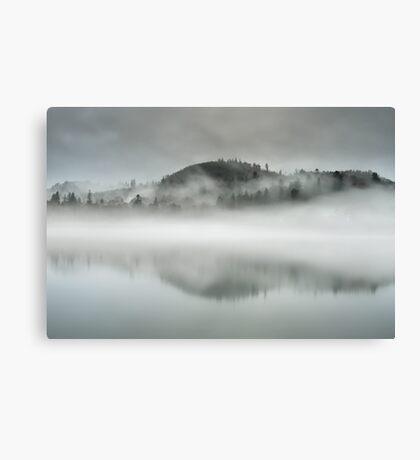 Fawe Park Mist Canvas Print