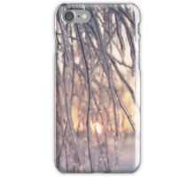 Tree Branch after Freezing Rain iPhone Case/Skin