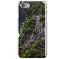 Forest on the tree iPhone Case/Skin