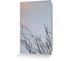 New moon and winter plant Greeting Card