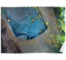 Peatland Abstract - 813092015 Poster