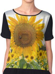 Bee on Sunflower Chiffon Top