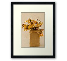 Gloriosa Daisy Flowers Withered Framed Print