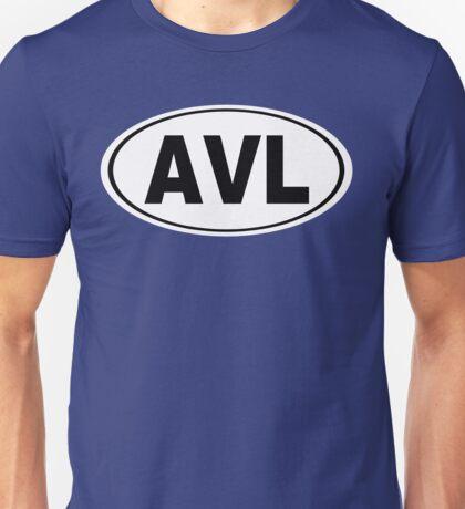 AVL Asheville North Carolina City Pride Unisex T-Shirt