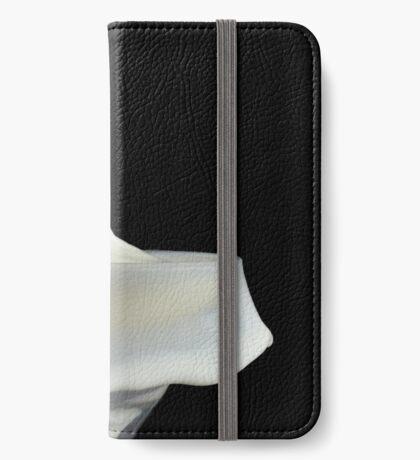 Milk Splash iPhone Wallet/Case/Skin