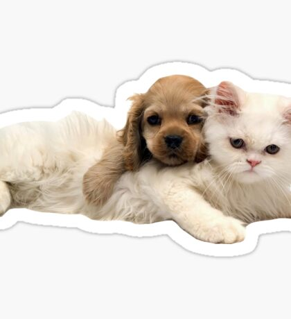 Cat and Puppy Sticker