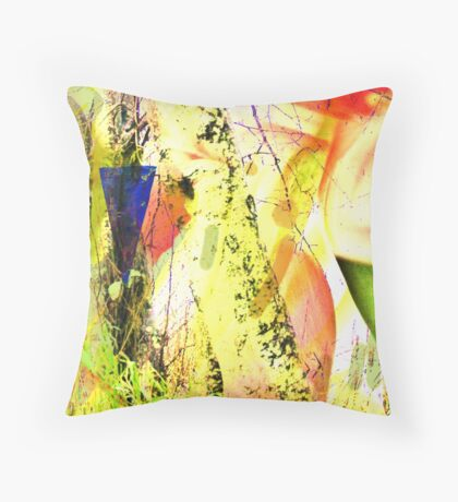 Entspricht der Blaupfeilverordnung Throw Pillow