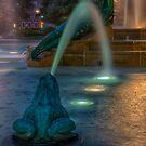 Swann Fountain by anorth7