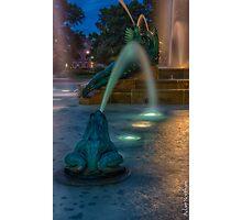 Swann Fountain Photographic Print