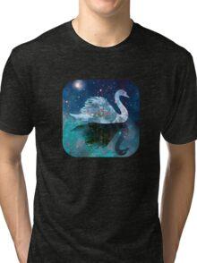 Dream Swimmer Tri-blend T-Shirt