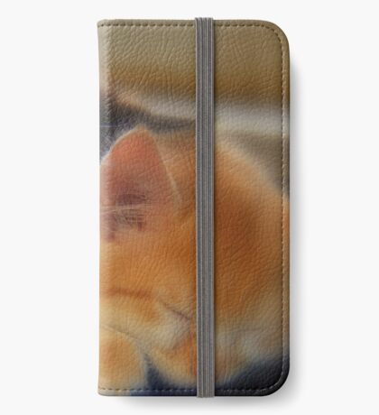 Walter and Summer napping. iPhone Wallet/Case/Skin