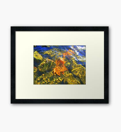 Fall Leaves in the Ohio River Framed Print