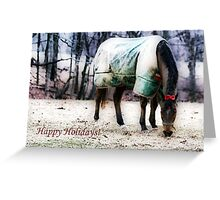 Happy Holidays! Greeting Card