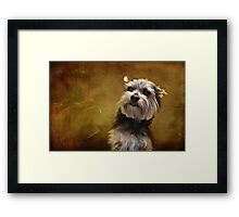 Meet Chalky! Framed Print