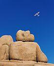 iPad Case. I Wish I Could Fly. by Alex Preiss