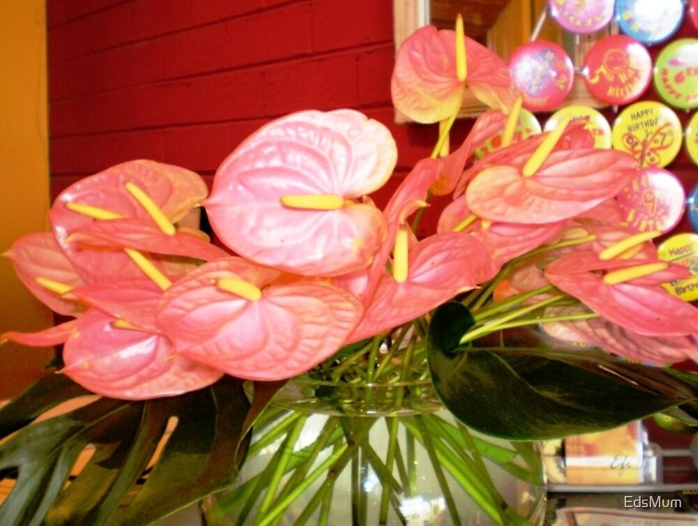 *Anthurium (Flamingo Flower) at Florist by EdsMum