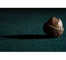A is for.....Acorn Photographic Print