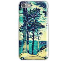 Abstract Shore iPhone Case/Skin