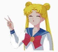 Sailor Moon Usagi by constant y