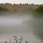 Fall on the Manistee River by Joy Fitzhorn