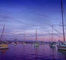 Newport by Jason Butts