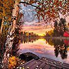 Birches on Mirror Pond by John Williams