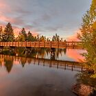 Foot Bridge with Pink Clouds by John Williams