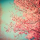 Pretty pink leafs in a textured blue sky by Caroline Mint