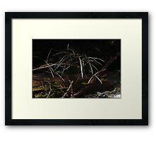 Fallen lance Framed Print