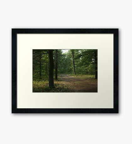 The Path Less Taken? Framed Print