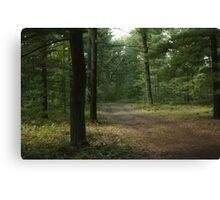 The Path Less Taken? Canvas Print