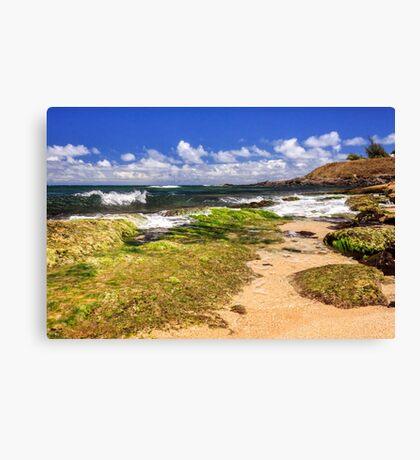 Ho'okipa Beach Maui Canvas Print