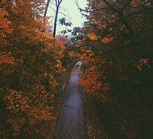 Pathway by monicaskipper